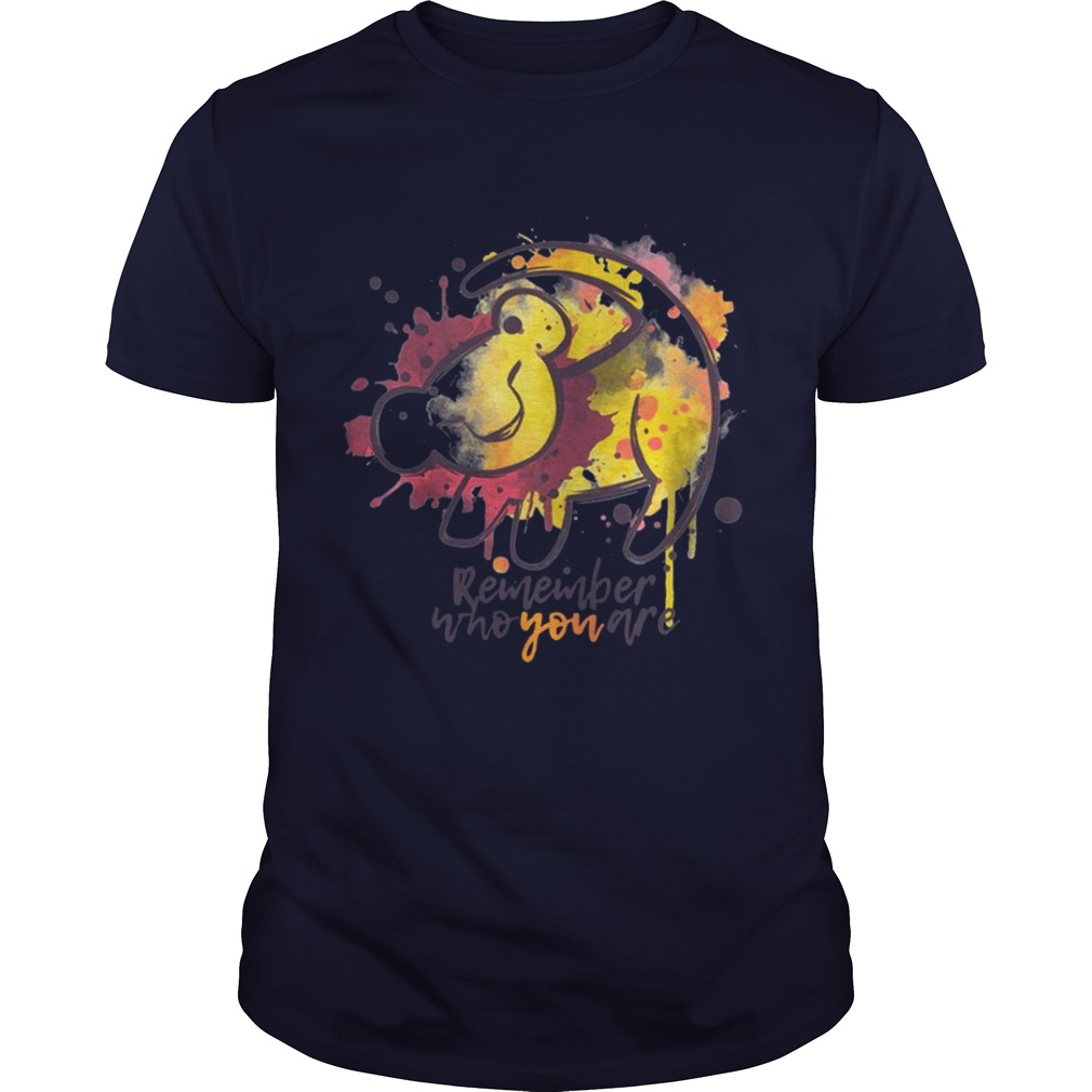 Lion King Remember who you are tshirt
