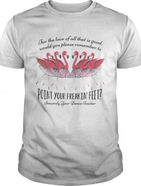 Ballet flamingo for the love of all that is good would you please remember to point for freakin' feet sincerely your dance teacher shirts