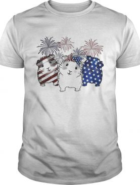 Fireworks Guinea Pigs 4th of July independence day American flag shirts
