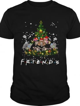 Friends Harry Potter Hermione And Ron Weasley Christmas Shirt