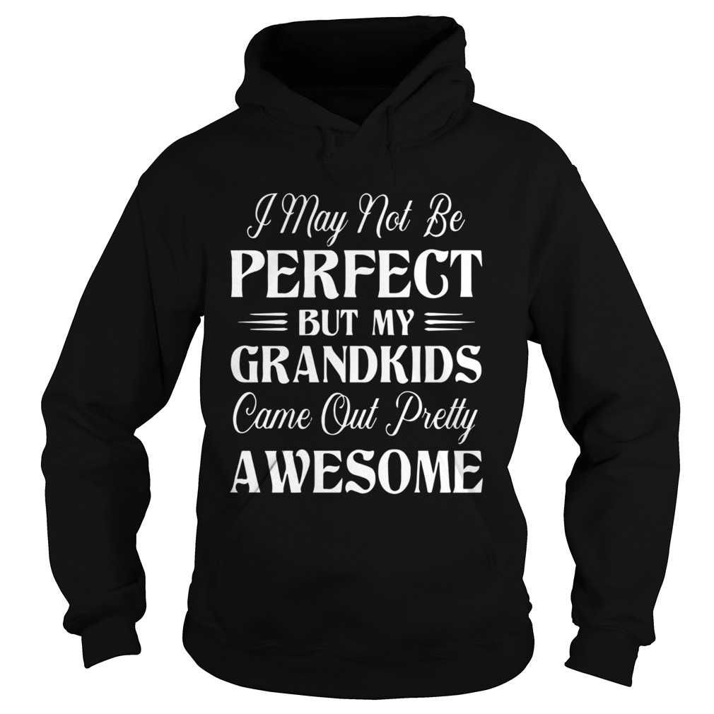 My Grandkids Came Out Pretty Awesome  Hoodie