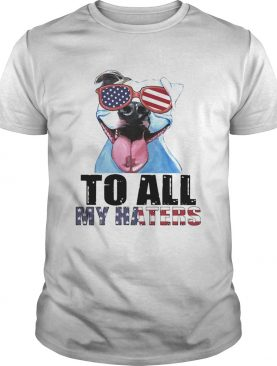 To all my haters pitbull American flag veteran Independence Day shirt