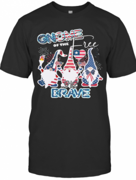 Gnome Of The Free And The Brave Firework America 4Th Of July Independence Day T-Shirt